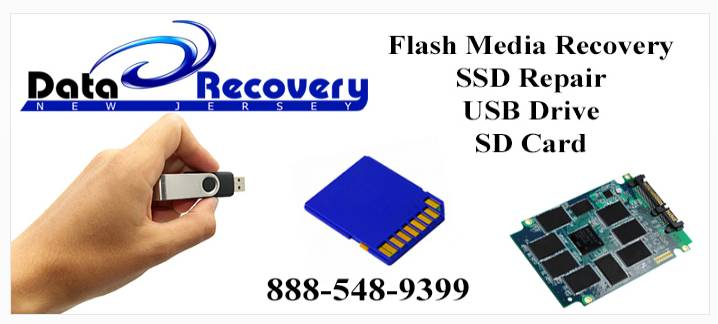 Purchase MiniTool Power Data Recovery Software Online